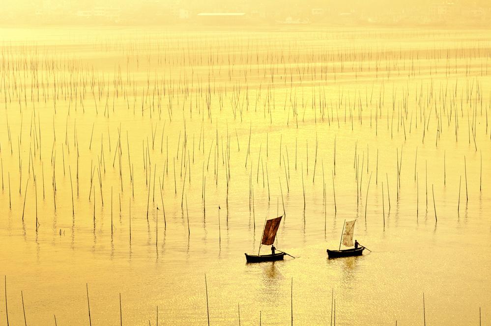 A piece of fine art art photography titled Sunkissed by Usha Peddamatham