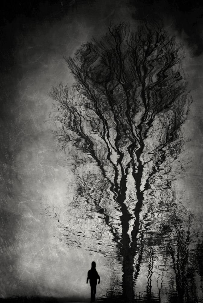A piece of fine art art photography titled Winter Dream by Anja Buehrer