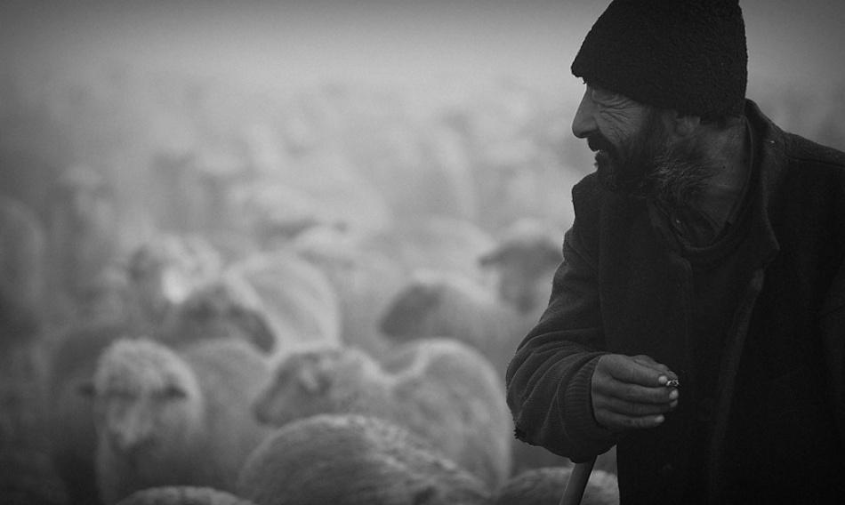 A piece of fine art art photography titled The Good Shepherd by Mircea Balatescu