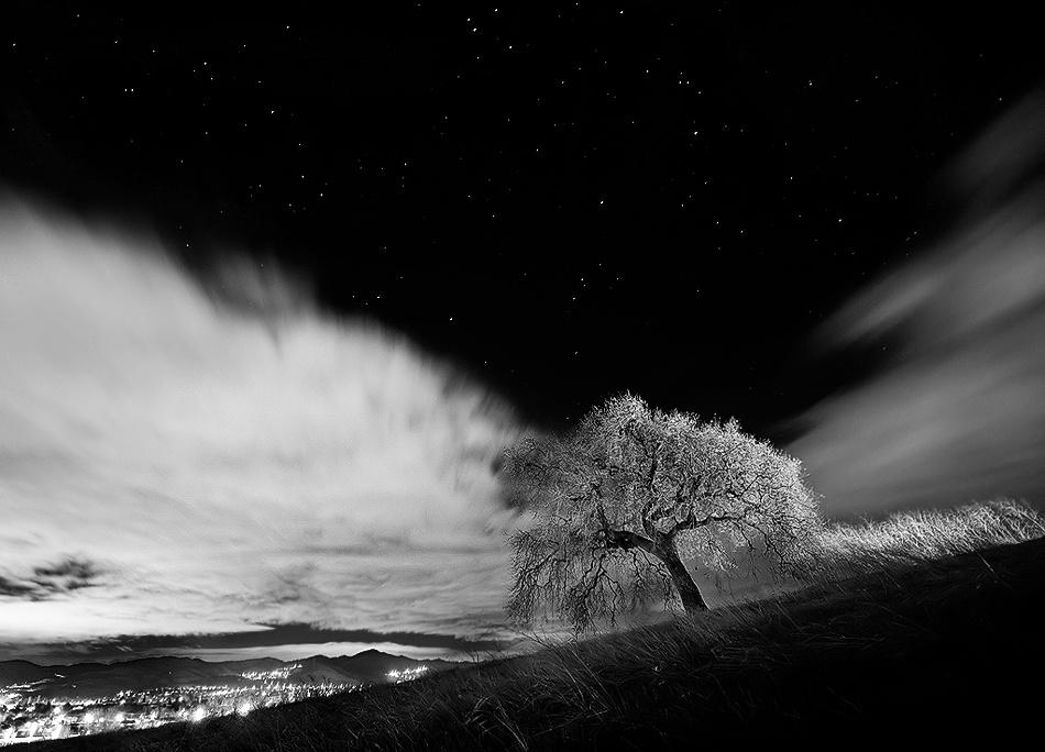 A piece of fine art art photography titled Split Open by Joseph Dannels