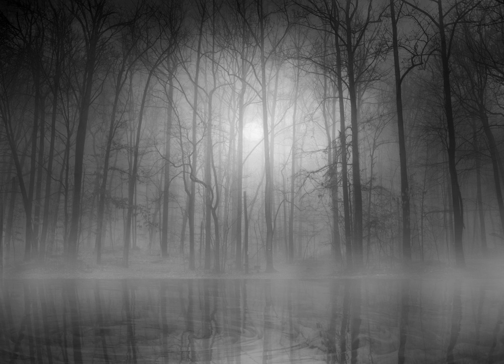 A piece of fine art art photography titled Morning Mist by BethAnne Lutz