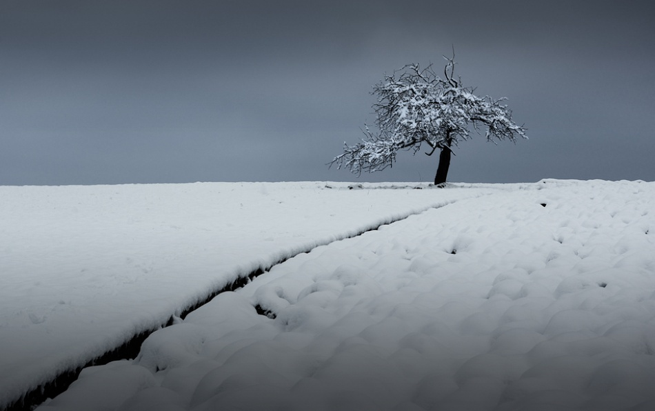 A piece of fine art art photography titled Cold Morning by kregon