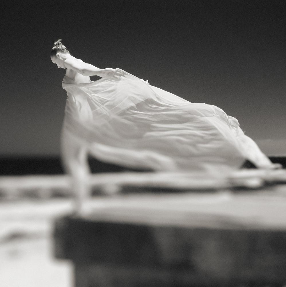 A piece of fine art art photography titled Stand Tall by Mel Brackstone