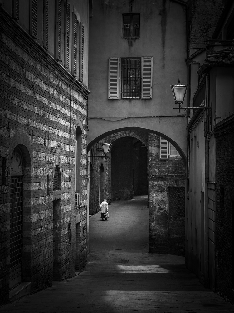 A piece of fine art art photography titled Focus by Miha Šegula