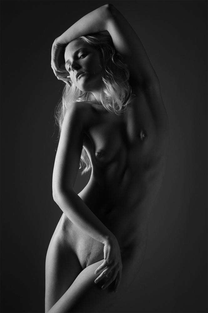A piece of fine art art photography titled Artica by Dieter Plogmann