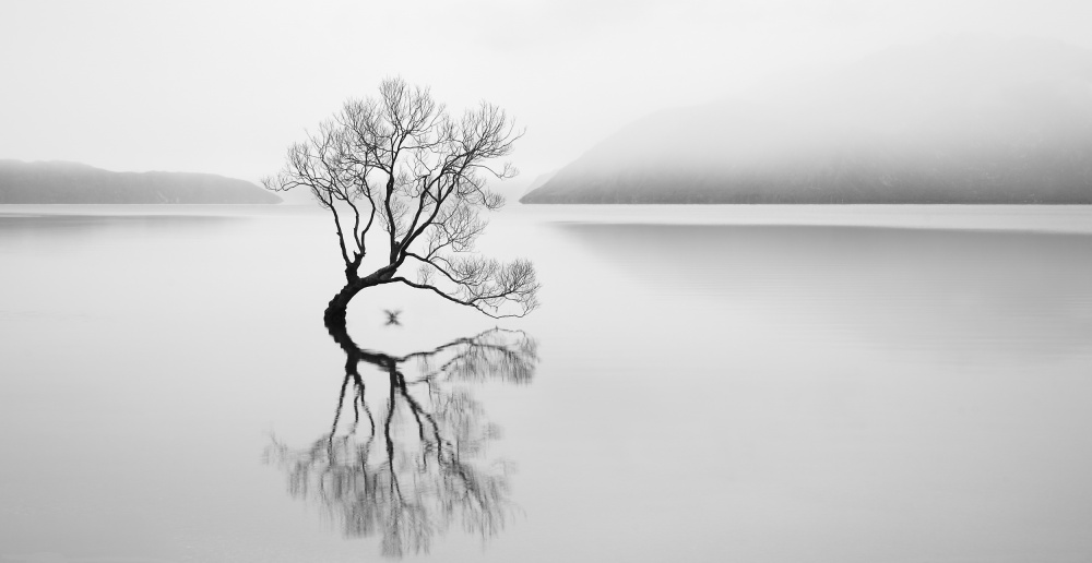 A piece of fine art art photography titled Serenity by Neville Jones
