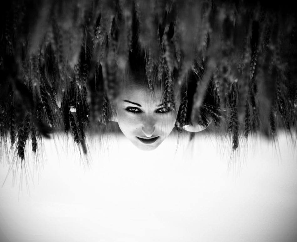 A piece of fine art art photography titled Summer Dream by Sergiu Cioban