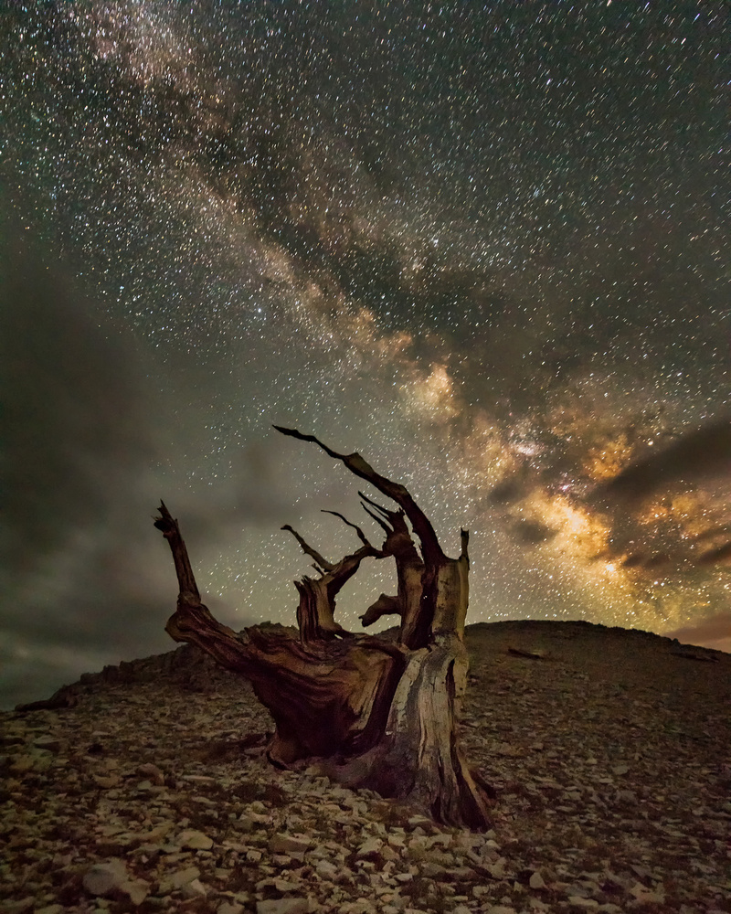 A piece of fine art art photography titled Milky Way Comes to White Mountain by Annie Poreider