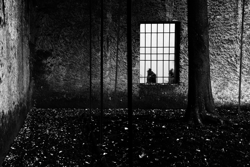 A piece of fine art art photography titled Closed Garden by franco maffei