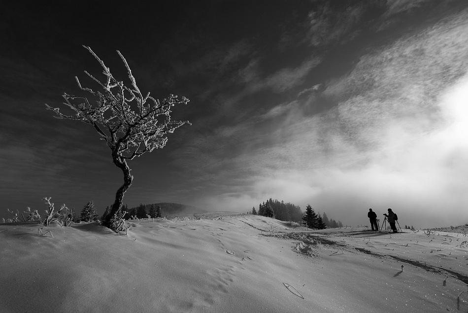 A piece of fine art art photography titled In the Landscape by Matus Hrubovsky