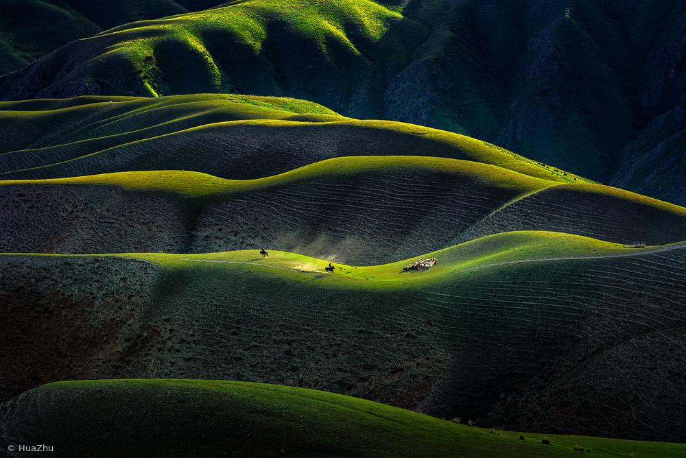Joan Kushtai Grassland