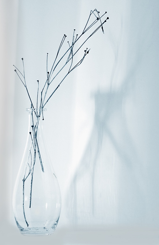 A piece of fine art art photography titled Bottle and Dry Twigs by Bill Mangold