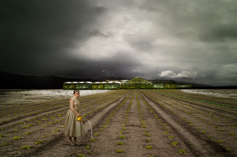 A piece of fine art art photography titled The Farm by Christine von Diepenbroek