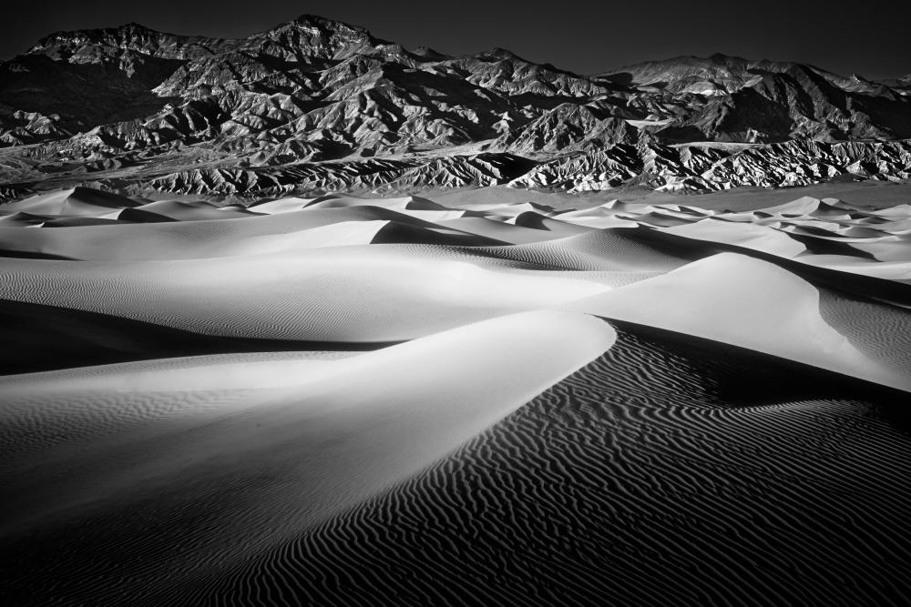 Mesquite Dune