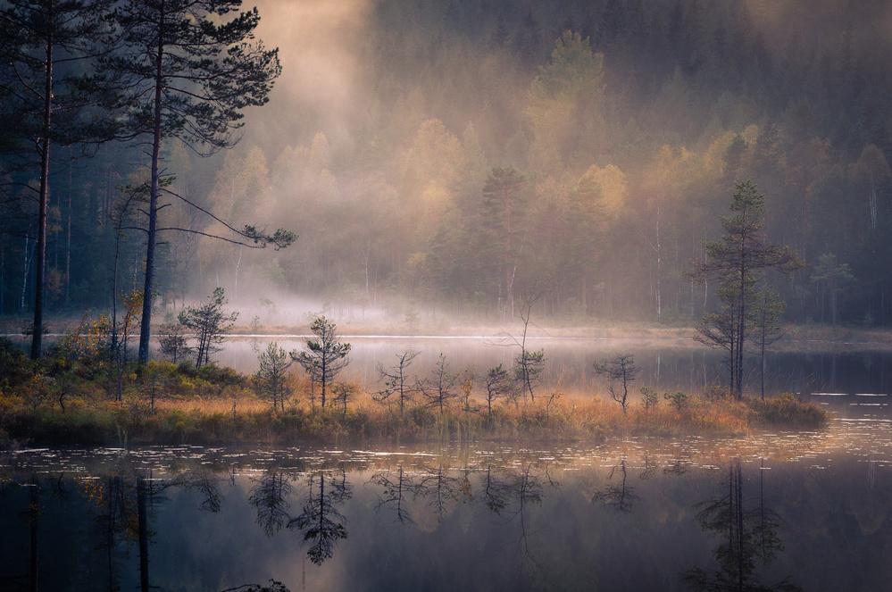 Misty Moment