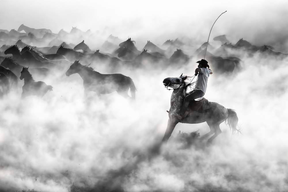 A piece of fine art art photography titled Cowboy by Aylin Erozcan