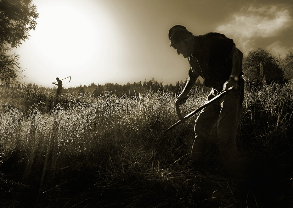 A piece of fine art art photography titled A Survival to the Old Way by milan malovrh
