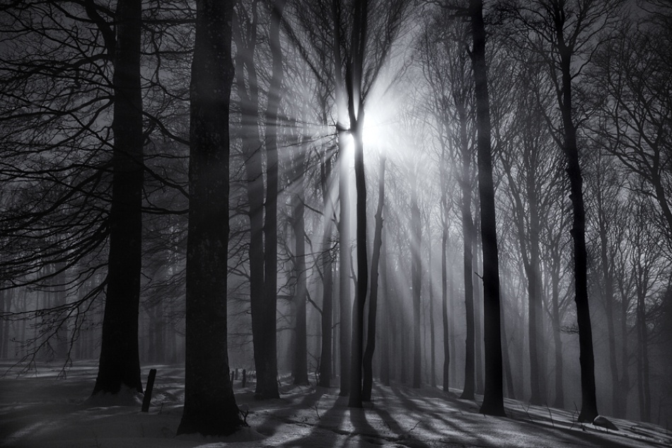 A piece of fine art art photography titled Blinded by the Light by Ralf Greiner