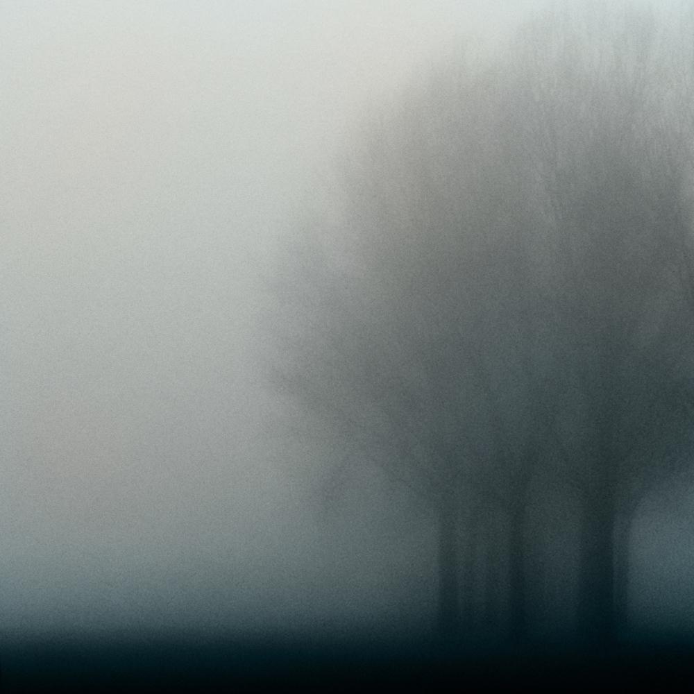A piece of fine art art photography titled Blue Monday by Jacqueline van Bijnen