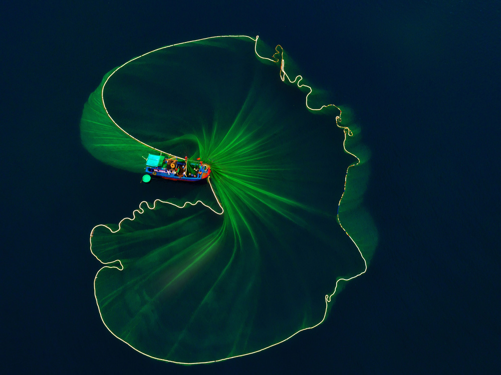 View this piece of fine art photography titled Lotus leaf on the sea by Nguyen Tan Tuan