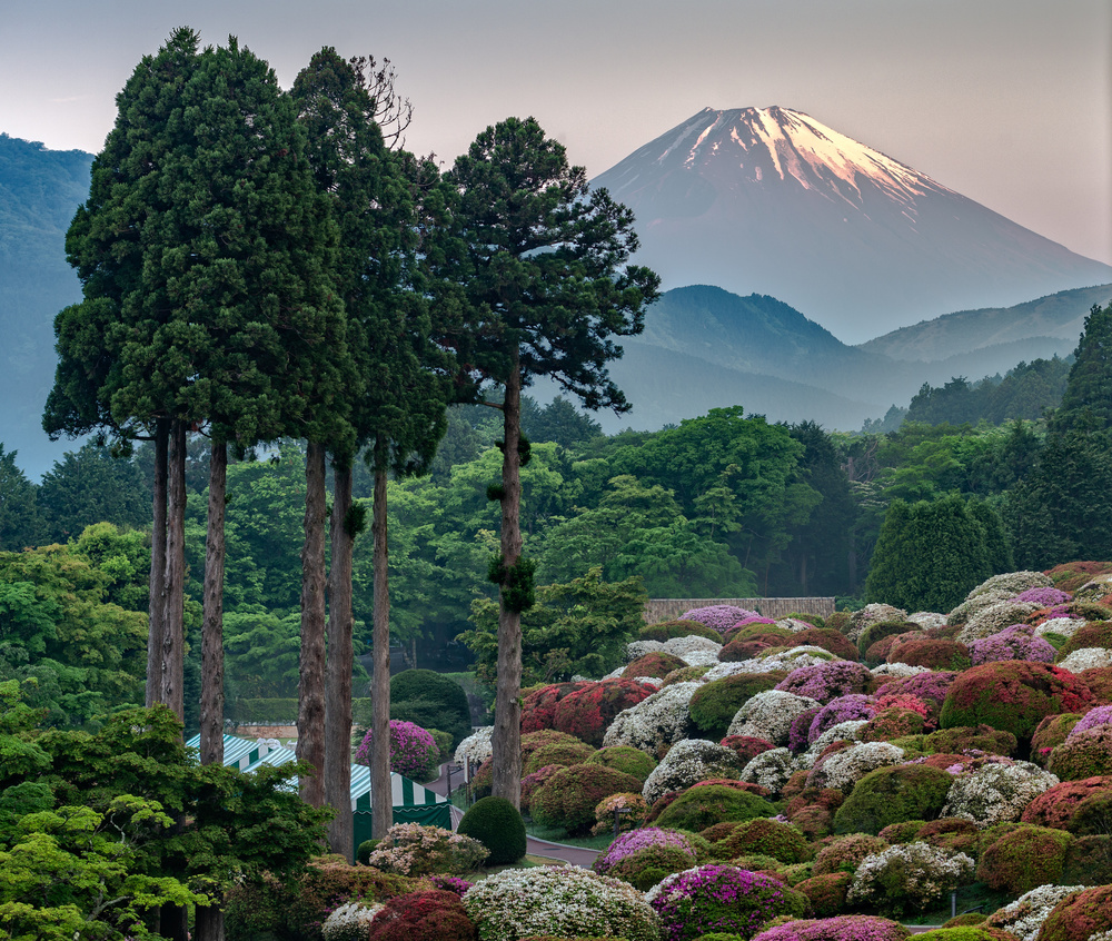 A piece of fine art art photography titled Capturing the Fuji at Dawn by Guy Sapir