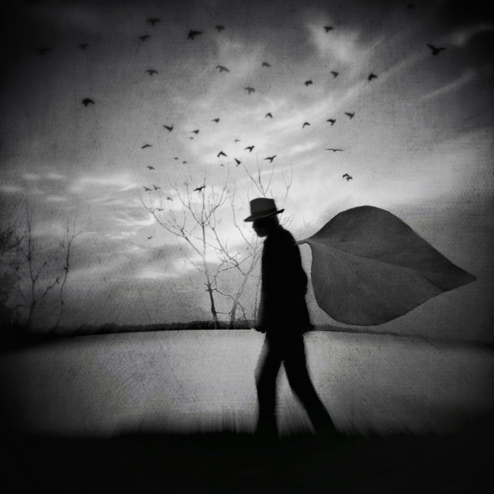 A piece of fine art art photography titled And the Wind Was Blowing Gently Over Mr K by Paul Suciu