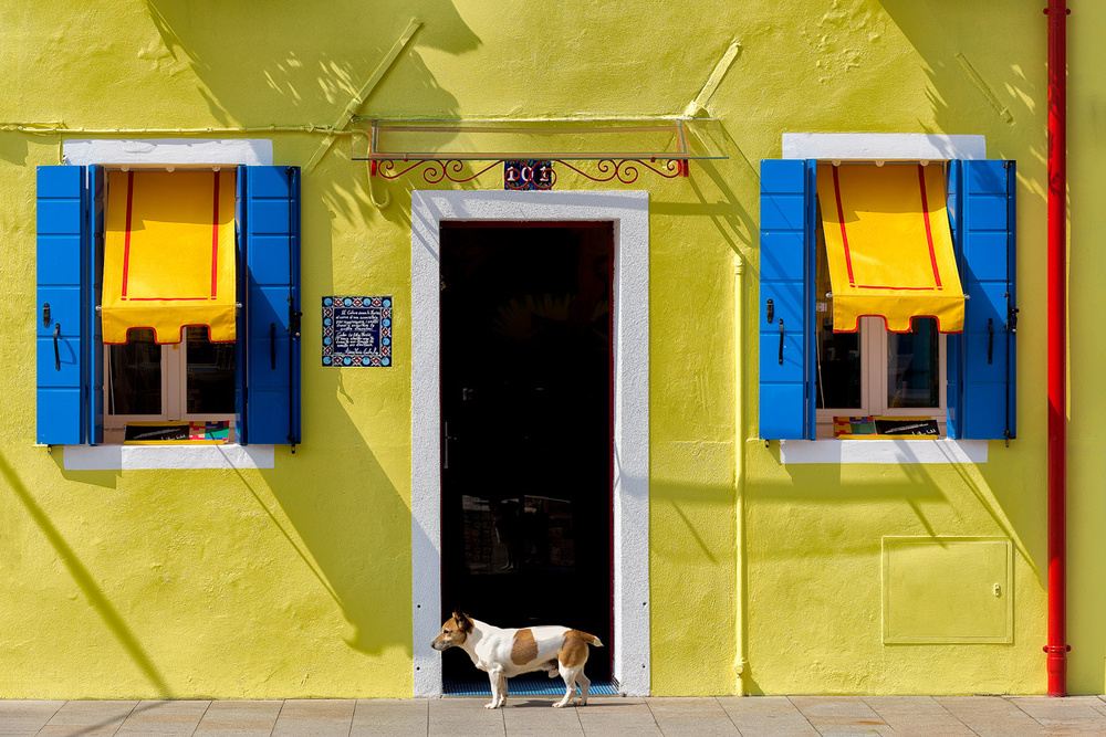 A piece of fine art art photography titled Observing Burano by Sergio Levorato