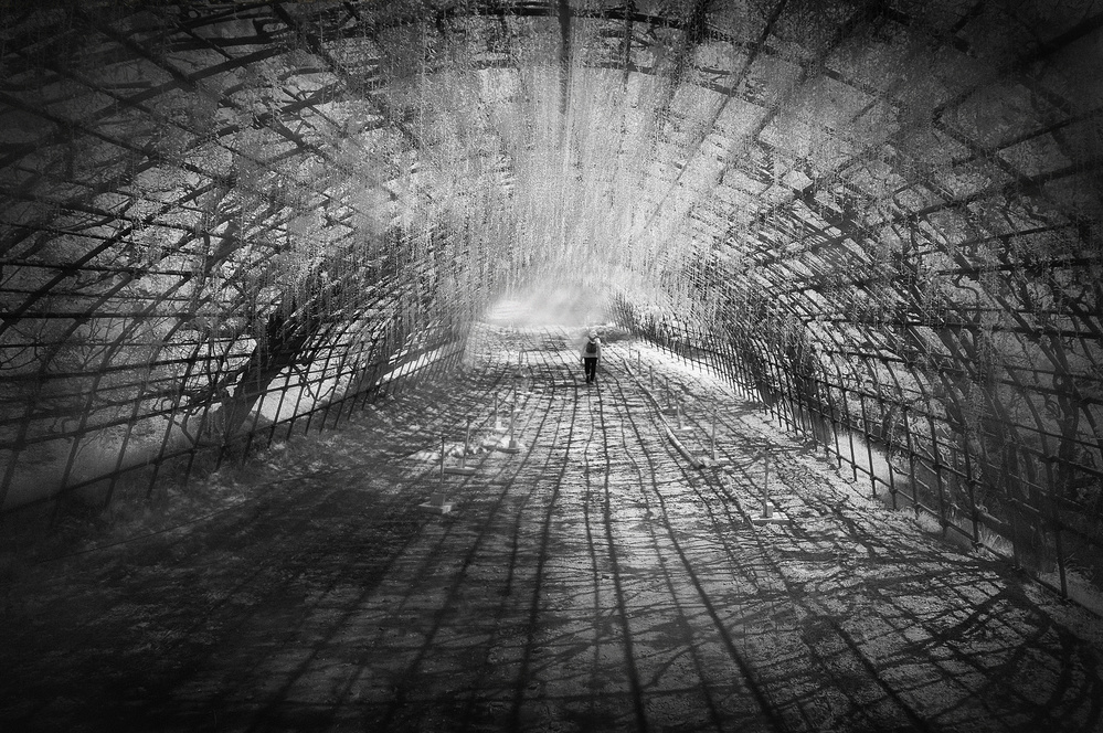 A piece of fine art art photography titled In the Tunnel of Flower by Ekkachai Khemkum