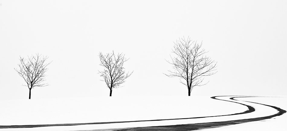 A piece of fine art art photography titled Black and White by Tobias Kleemair