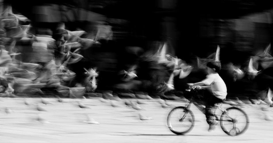 A piece of fine art art photography titled Dense Air by Inés Montenegro