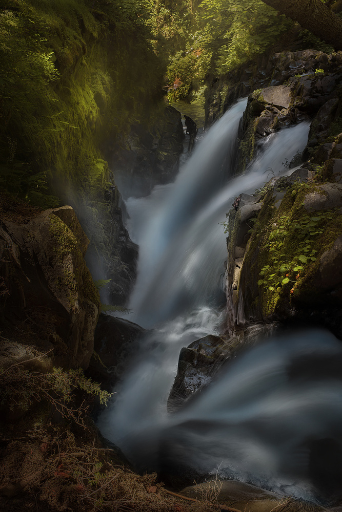 A piece of fine art art photography titled Sol Duc by Louise Yu