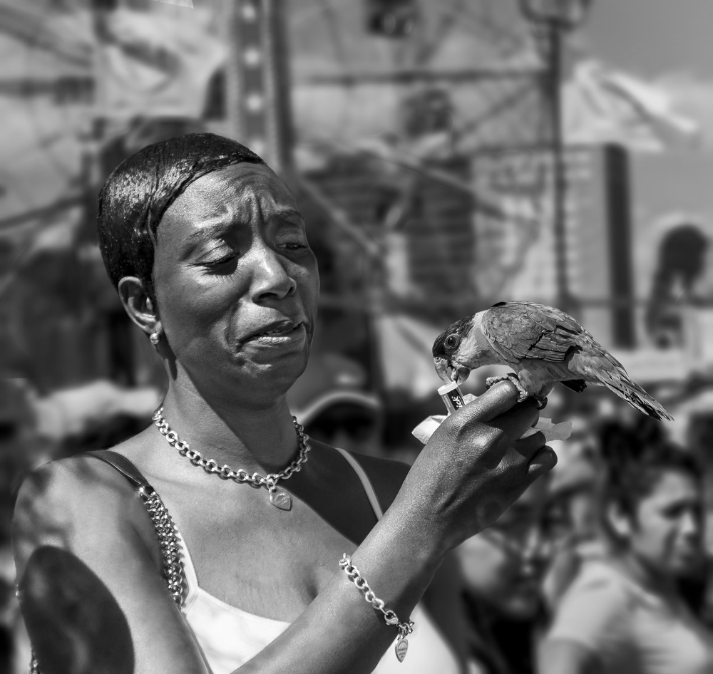 A piece of fine art art photography titled Coney Island Parrot by Michael Castellano