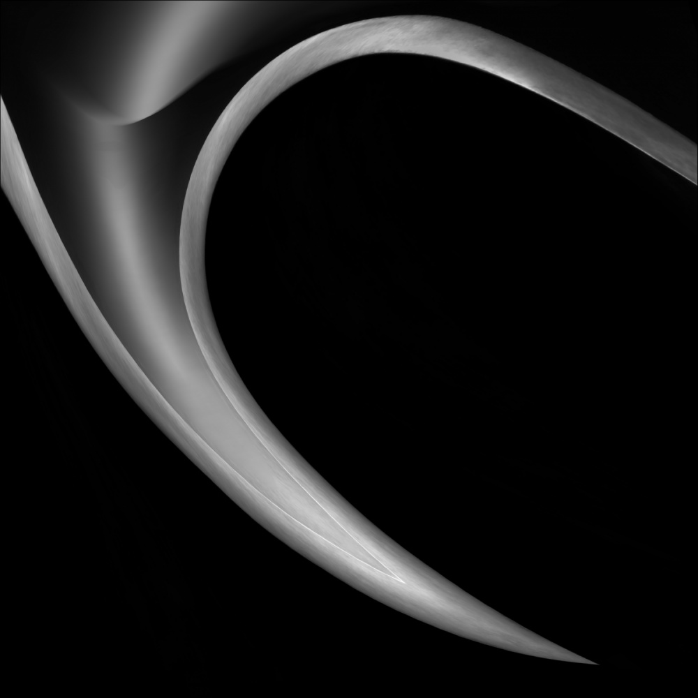 A piece of fine art art photography titled The HorN by Gilbert Claes