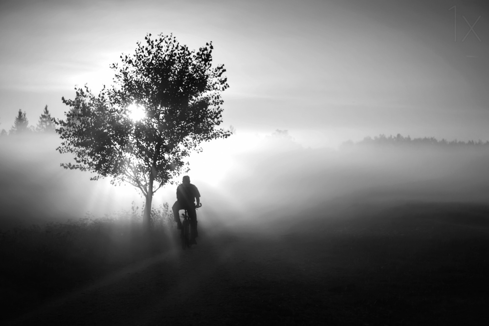 A piece of fine art art photography titled Floating Into the Day by Roswitha Schleicher-Schwarz