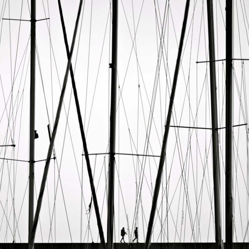 A piece of fine art art photography titled Wires by Carlo Cafferini