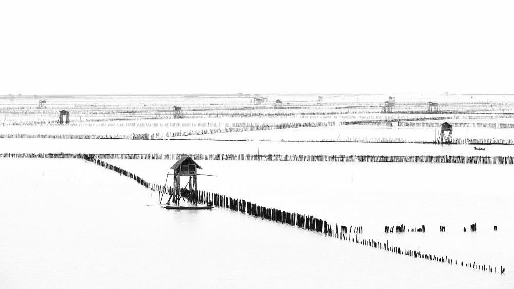 A piece of fine art art photography titled Shellfish Farm by Vichaya