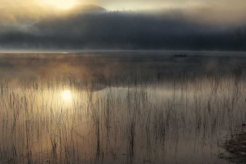 A piece of fine art art photography titled The Morning Silence by Magda Bognar