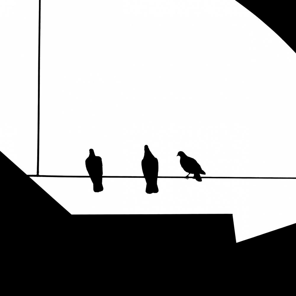 A piece of fine art art photography titled Approach by Klaus Lenzen