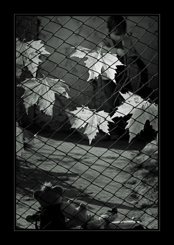 A piece of fine art art photography titled Tears In Heaven by george gradinaru
