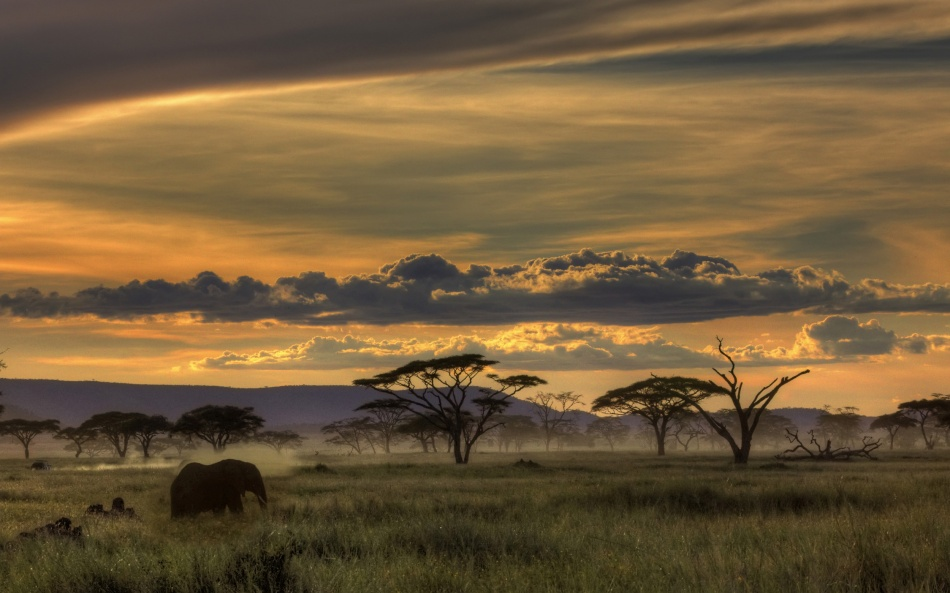 A piece of fine art art photography titled Africa by Amnon Eichelberg