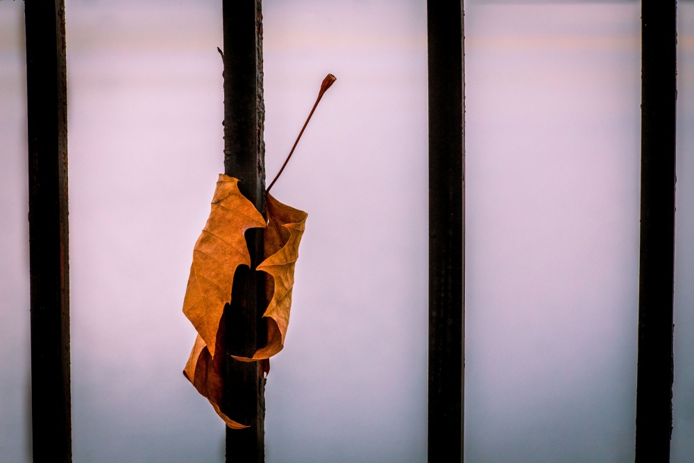 A piece of fine art art photography titled Don't Let Go by Andriy Vintonyak
