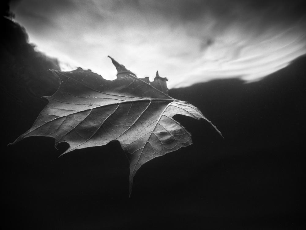 Adrift in Time