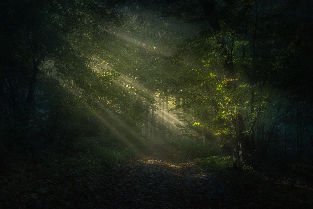 A piece of fine art art photography titled When Light Breaks Through by Peter Svoboda, MQEP