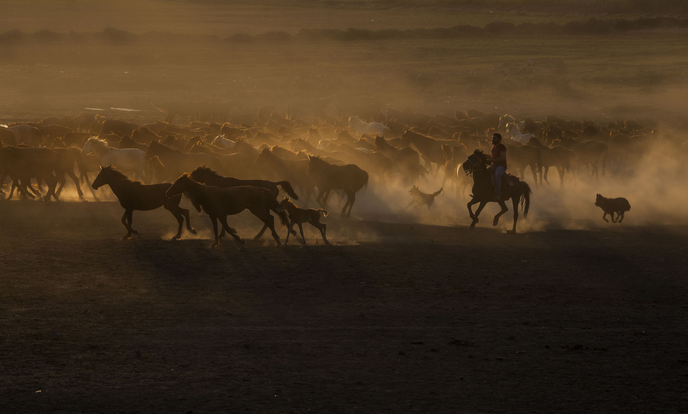 A piece of fine art art photography titled Beautiful the Country of Horses by Ramiz Şahin