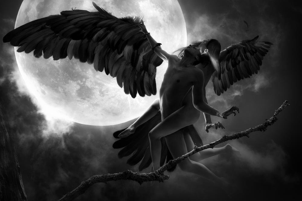 A piece of fine art art photography titled Raven Dance by Christophe Kiciak