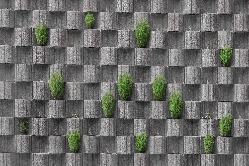 A piece of fine art art photography titled Graygreen by Klaus Lenzen