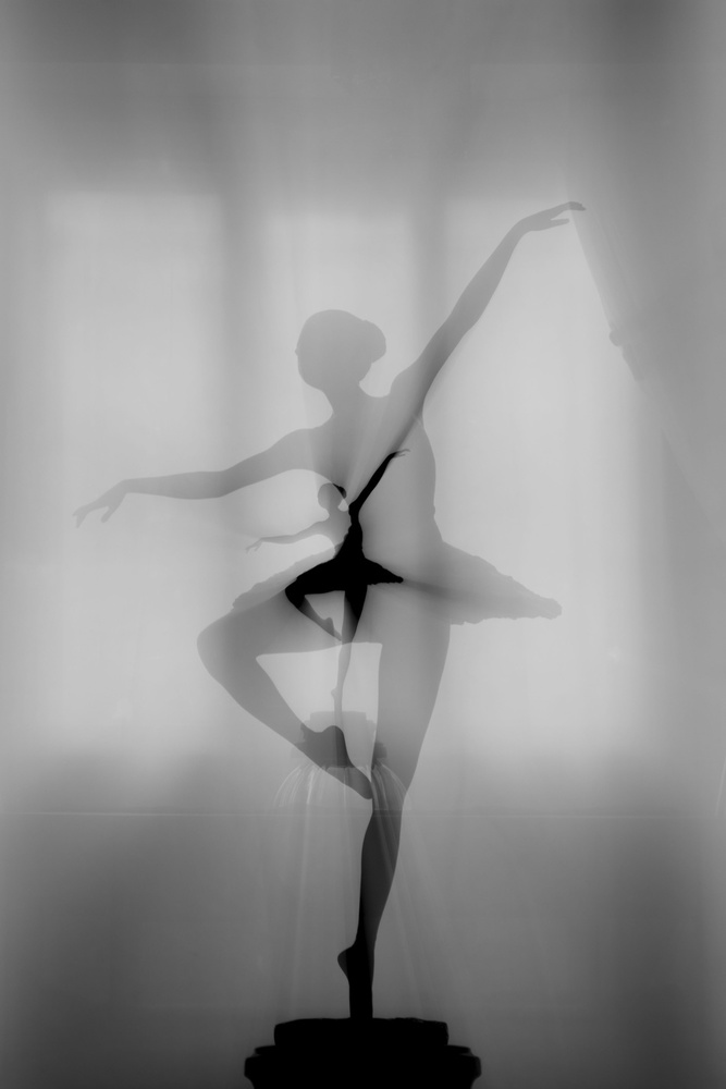 View this piece of fine art photography titled My Favorite Dancer by pphgallery