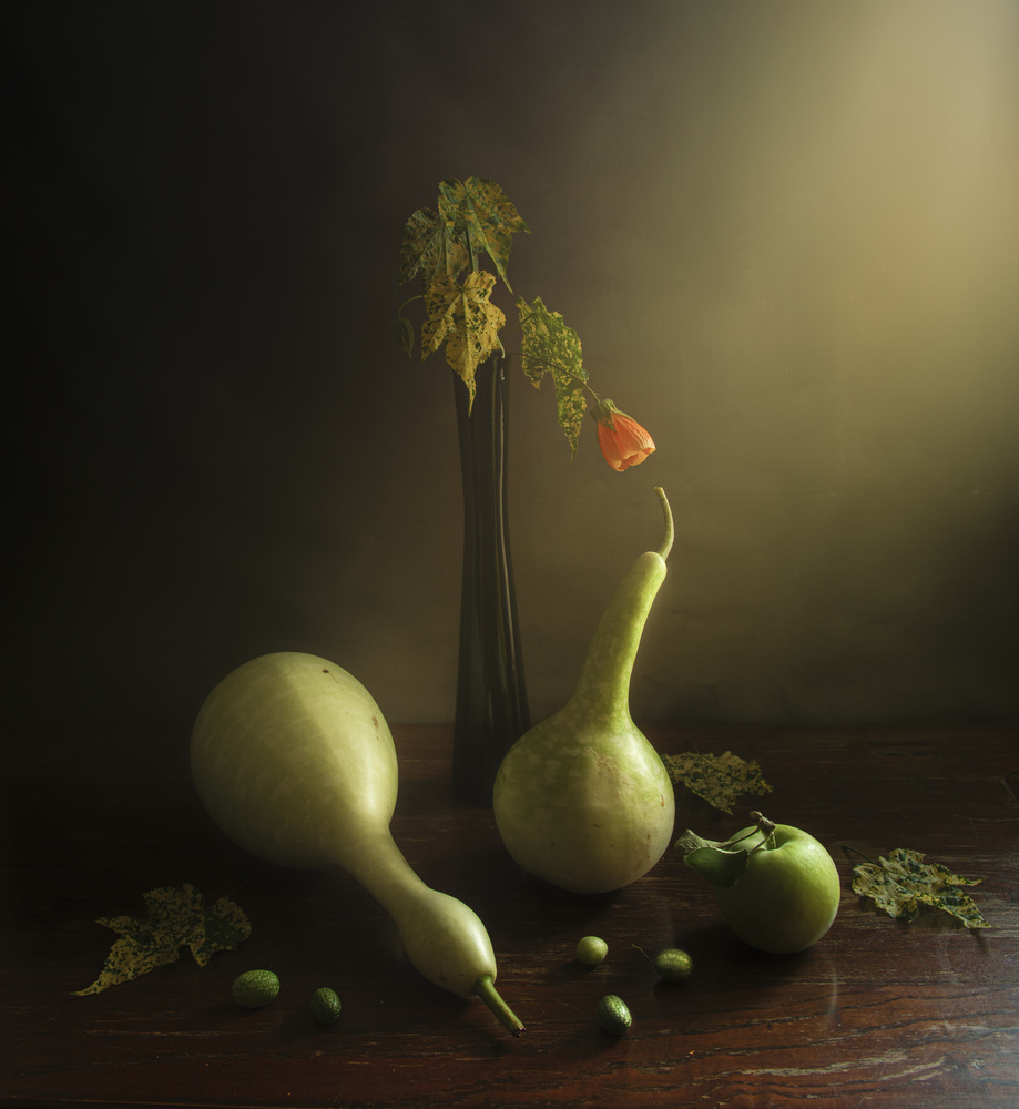 View this piece of fine art photography titled green still life by Judy Tseng