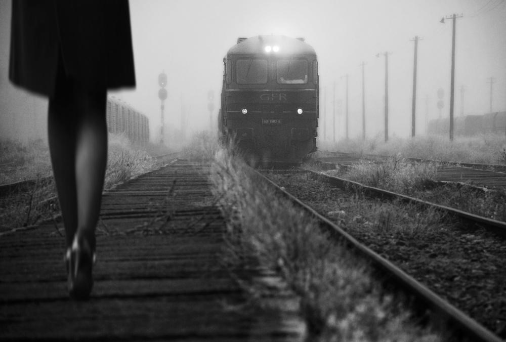 A piece of fine art art photography titled November Passengers by nicoleta gabor