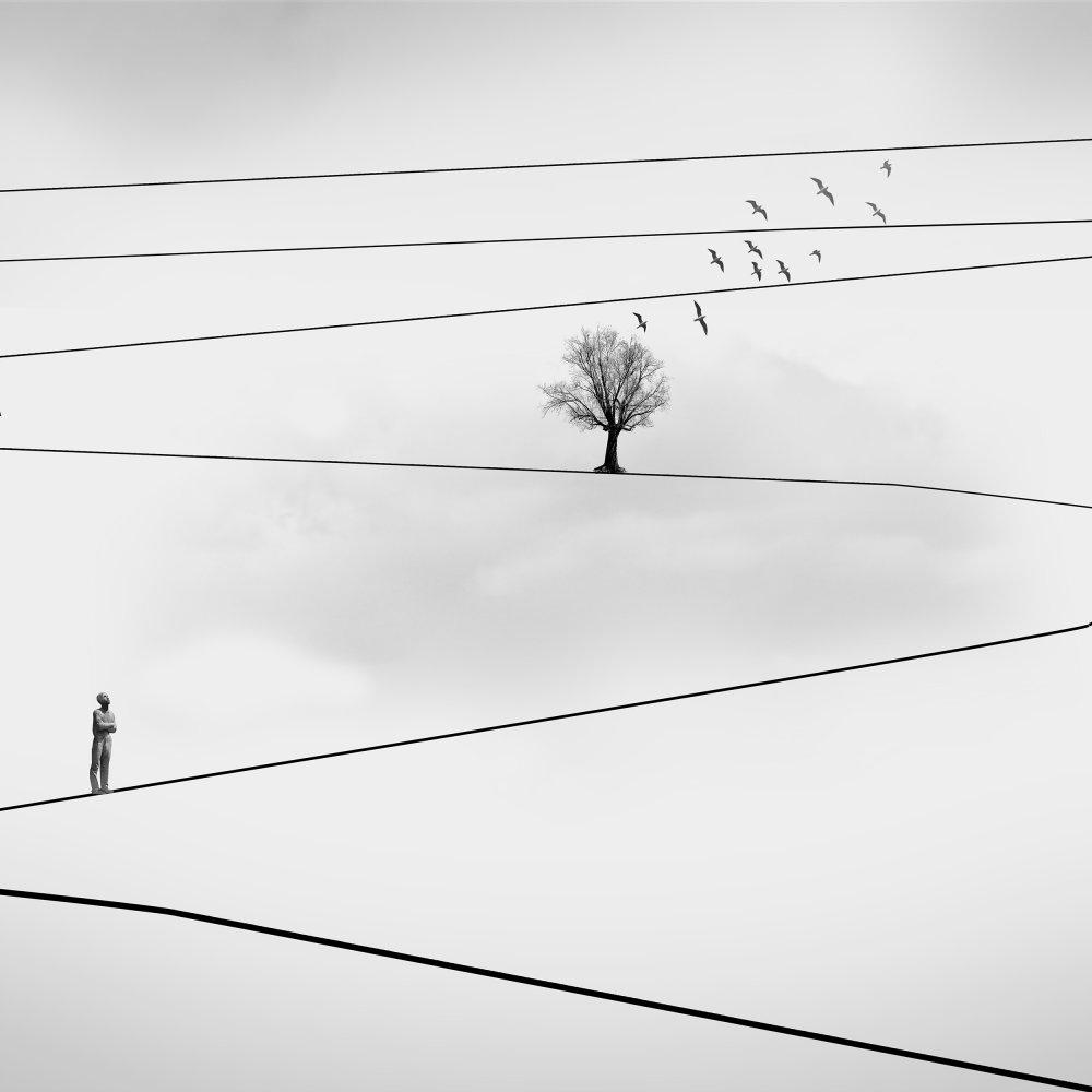 A piece of fine art art photography titled Observer by Maryamhasaniborchaloui